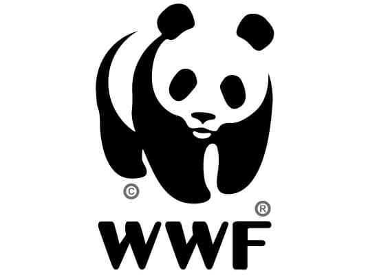 The World Wildlife Fund logo uses the closure principle of Gestalt theory to describe a panda, even though the shape is not fully closed